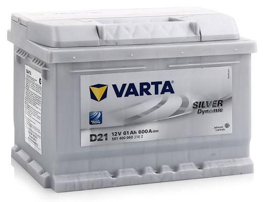 Silver Dynamic D21