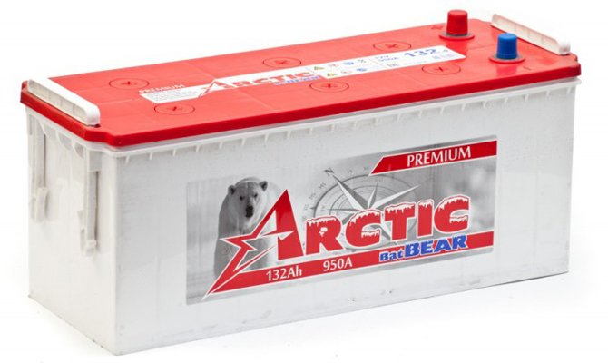 Arctic BatBear